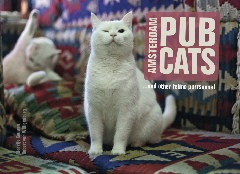 cover Amsterdam pubcats